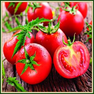 اسلایس گوجه